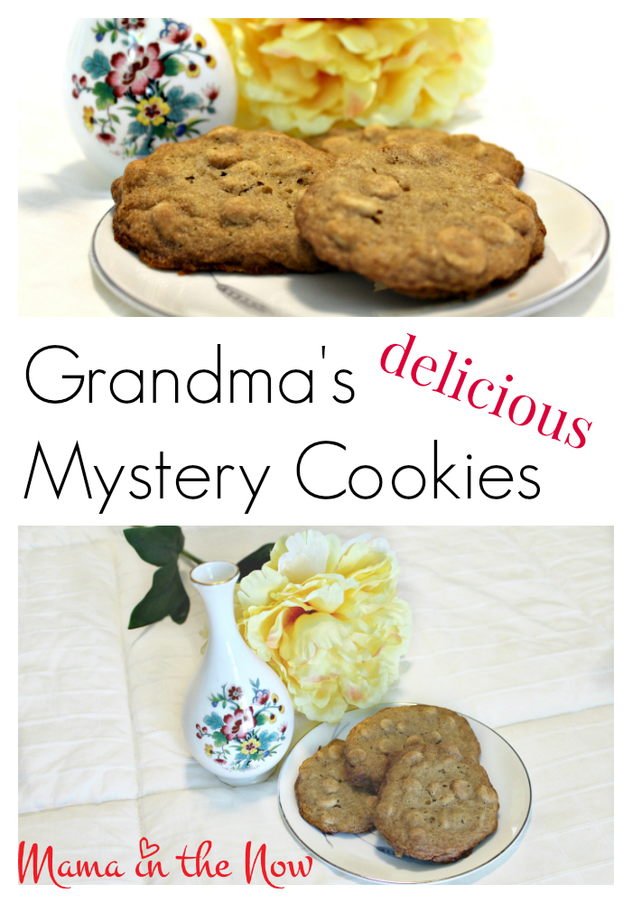 Grandma's DELICIOUS Mystery Cookies. They are easy and fun to make. This frugal cookie recipe will be your new favorite.