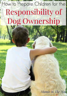 Prepare your children for the responsibility of dog ownership? Prepare your kids for a new puppy. Are your children old enough to care for a dog? Kids taking care of dogs. How to prepare kids for dog ownership. Teaching kids how to behave around a dog and teaching kids how to care for a dog. @topdogtips #mamainthenow #kidsandogs #childrenandogs #dogs #parenting #dogownership