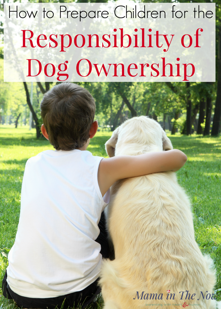 Prepare children for dog ownership? Prepare your kids for a new puppy. Are your children old enough to care for a dog? Kids taking care of dogs. How to prepare kids for dog ownership. Teaching kids how to behave around a dog and teaching kids how to care for a dog. @topdogtips #mamainthenow #kidsandogs #childrenandogs #dogs #parenting #dogownership