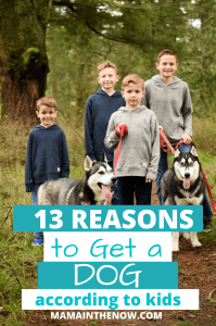 reasons to get a dog, according to kids