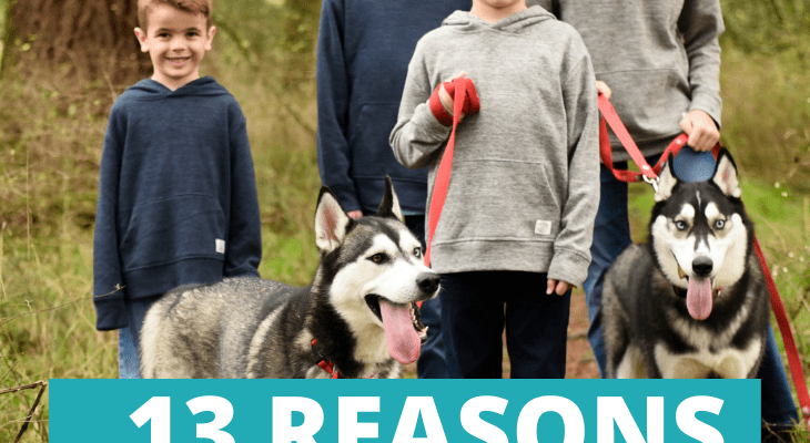 13 Reasons to Get a Dog, According to Kids