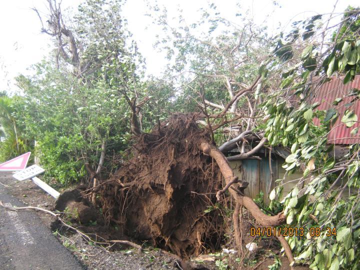 Cyclone Dumile 029