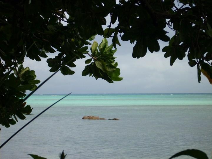 Madagascar 064