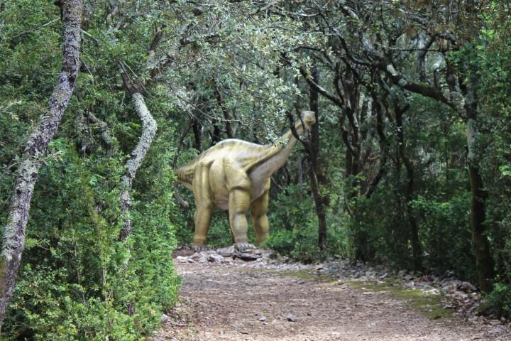 0 28avril - Zoo préhistorique - Aven Marzal (113)