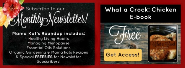 subscribe mama kats newsletter graphic