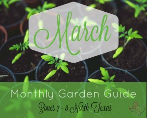 Monthly Garden Guide March Header