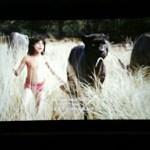 Review: Asyik Terkejut Tengok The Jungle Book!