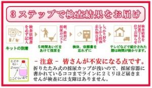 大豆イソフラボン エクオール 検査3ステップ