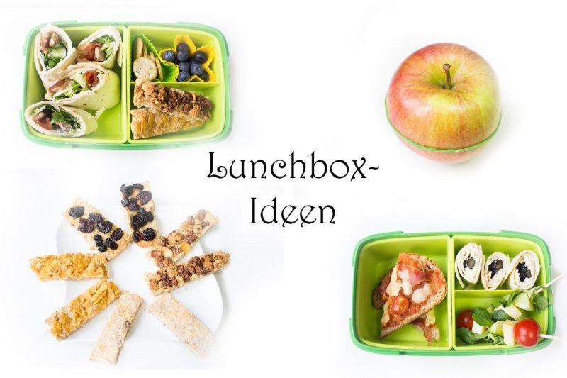Brotdosen Kinder Ideen Rezepte Lunchbox - Brotdosen Ideen für Kinder und Erwachsene, Arbeit, Schule, Kindergarten, Kita - Lunchbox Tipps - Brotdose kaufen und gestalten - gesund, lecker, einfach und cool