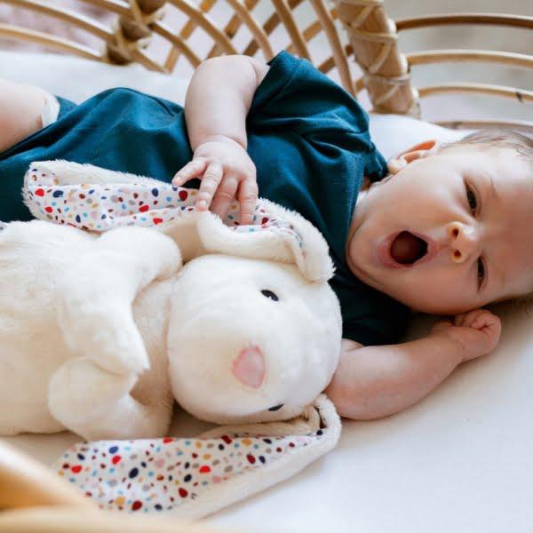 WHISBEAR® migdukas su verksmo jutikliu, Humming Bunny Creamy