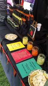 THE GOOSE GREEN FESTIVAL AT DULWICH 3