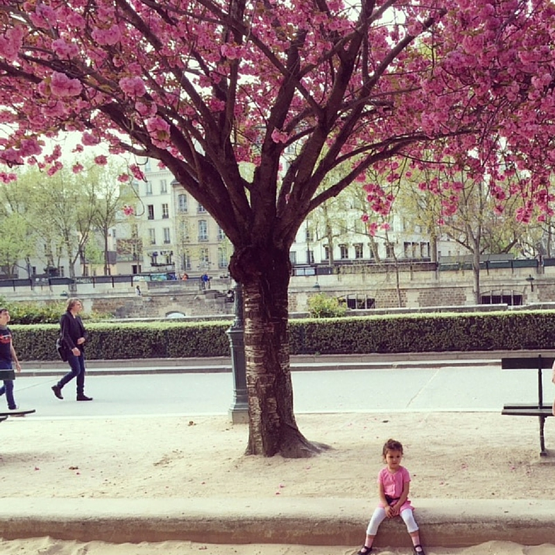 Discover the Parks in Paris
