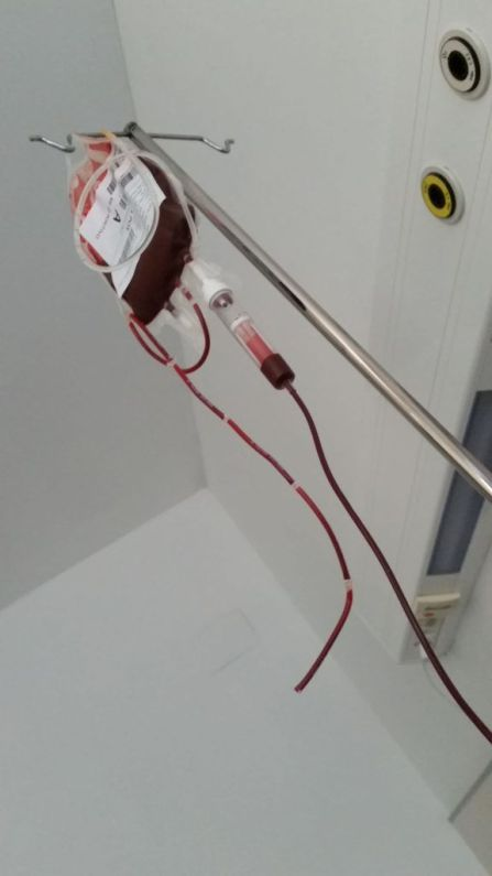 Mi última bolsa de sangre.
