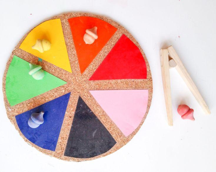 Bellotas en la rueda de colores.