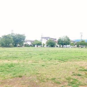 和田公園芝生広場