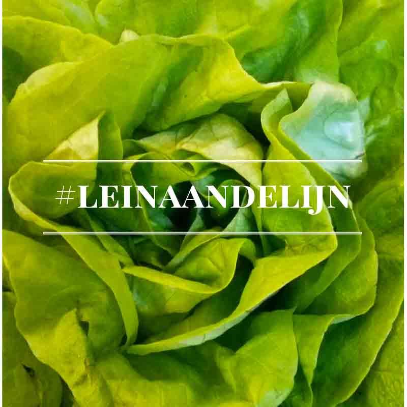 #leinaandelijn-foto mamameteenblog