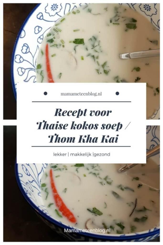 recept thaise soep mamameteenblog.nl (1)