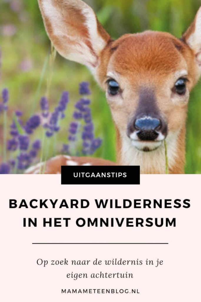 BACKYARD WILDERNESS OMNIVERSUM MAMAMETEENBLOG.NL