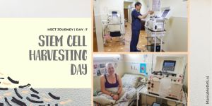 HSCT Blog - Harvesting day