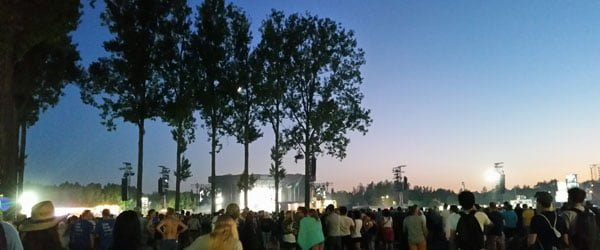 Rock Werchter Evening Trees