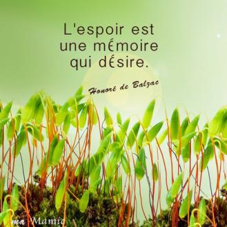 L'espoir est une mémoire qui désire - Honoré de Balzac