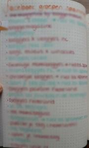 lijstje bullet journal