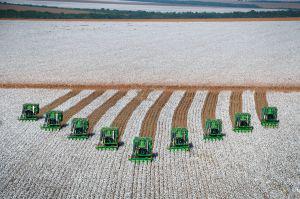 cotton_harvesting_-_grupo_bom_futuro_1