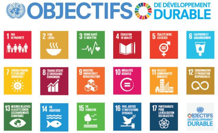 Ikigaï : ce dont le monde a besoin : Les objectifs de développement durable des Nations Unies - Agenda 2030