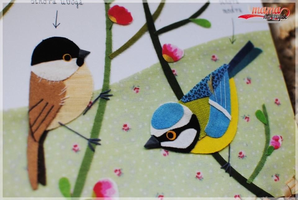 Mały atlas ptaków, książka dla dzieci, atlas dla dzieci