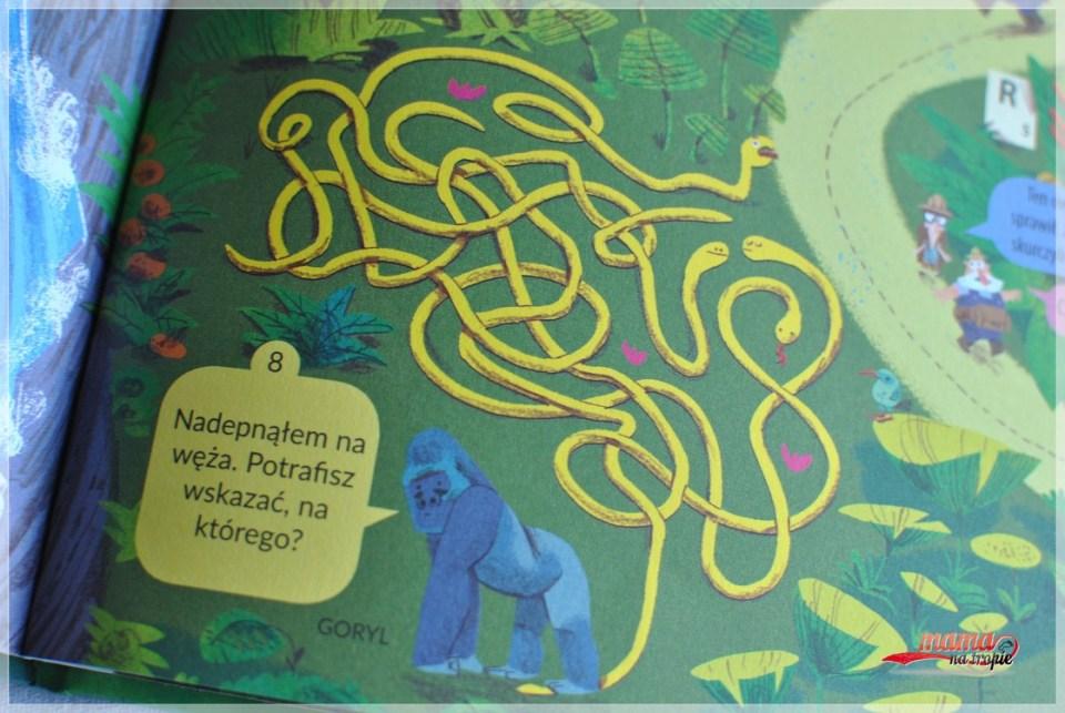 książka gra, książka dla 4-latka, zielona sowa, książka zagadek