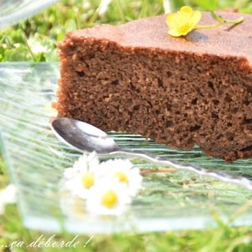 Gâteau au chocolat à l'eau gazeuse