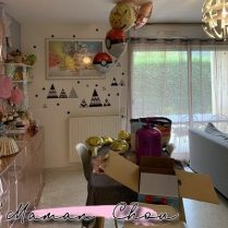 anniversaire pokémon girly (62)