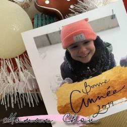 nos petits bonheurs de decembre 2018 (2)