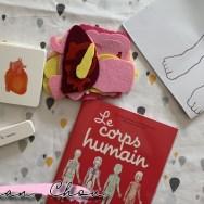 Mon coffret Montessori le corps humain
