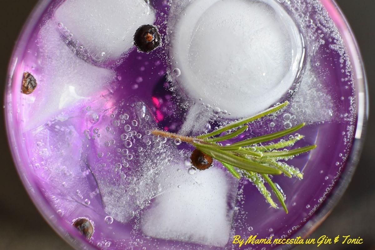 El Gin & Tonic perfecto