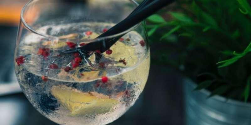 las mejores ginebras para gin tonic
