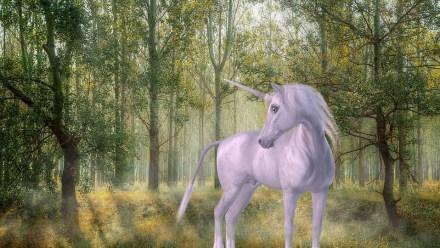 unicorn-1981219_960_720.jpg