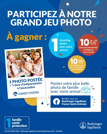 concours photo chien chat