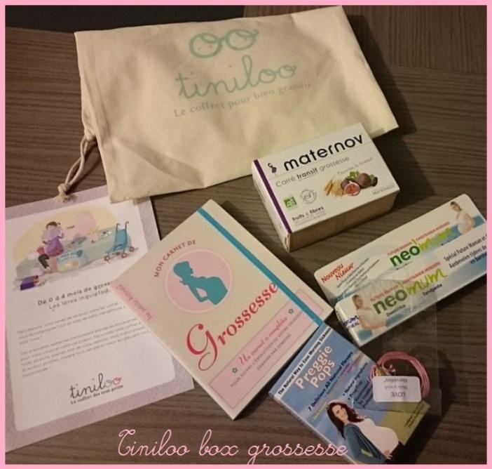 tiniloo box grossesse-mamanpouponne-papabricole