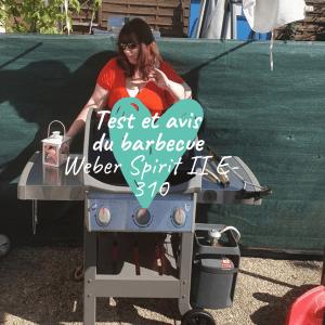 barbecue Weber Spirit II E-310