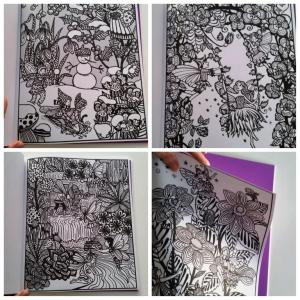 jardin des fées peinture magique