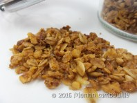 granola muesli15