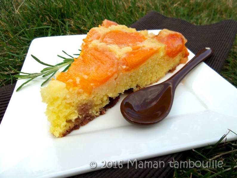 gateau abricot romarin27