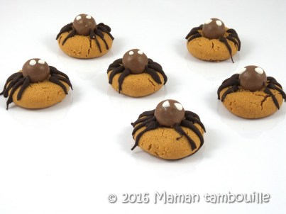 cookies-araignees10