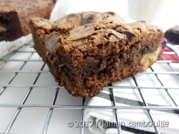 brownie teff21
