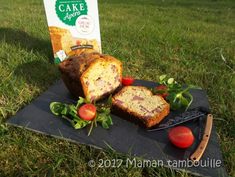 cake aux diots09