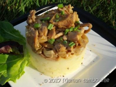 parmentier de poulet thai14