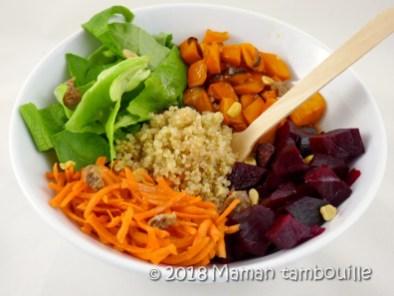 salade d'hiver20