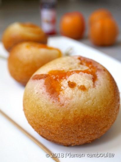 boules a l'abricot21