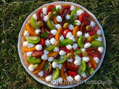 fantastik tomates anciennes34